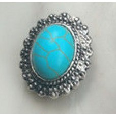 HappySnaps Jewel - Turquoise - Oval with Fancy Framed design